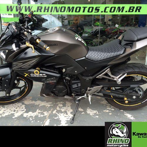 Kawasaki-Z300-STD-2016-cinzas10