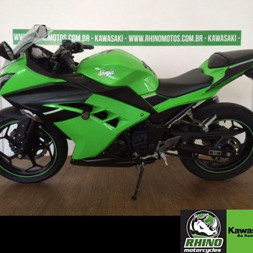 Ninja-300-STD-verde-2015o7