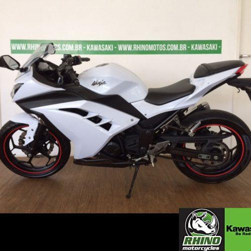 Ninja-300-std-branca-2013j7