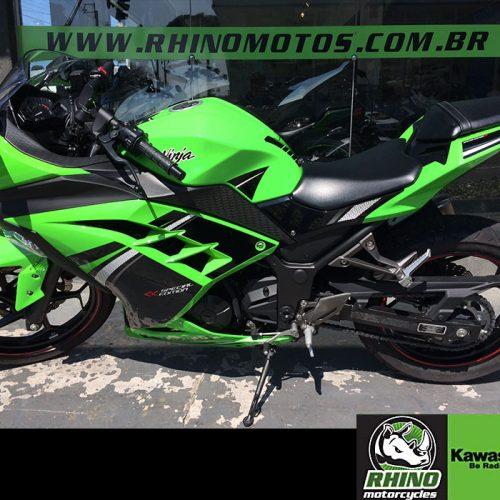 Kawasaki-Ninja-300-ABS-2014-Verden4