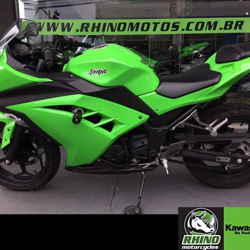 Ninja-300-STD-2013-verdeb5